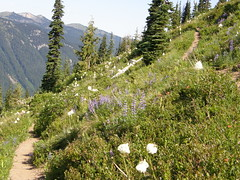 Views on way down Crystal Peak trail.