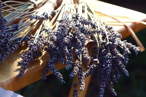 farmers market lavender.