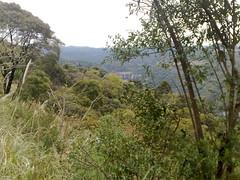 25072009243 (glaucoandre) Tags: rio do serra rastro