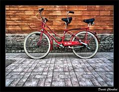 BiBici (Davide Cherubini) Tags: bike bicicleta explore chapeau frontpage bycicle bicicletta cherubini superaplus aplusphoto bibici dcherubini thesuperbmasterpiece davidecherubini oraclex