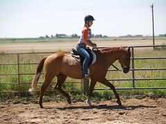 E learning to ride on Dunny (lostinfog) Tags: august 2009 colorado e300 riderem horse