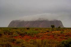 Wet Uluru (René Ehrhardt) Tags: red sky rain clouds wonder ancient oz nt australian australia aborigine outback uluru wilderness northern ayers territory geological