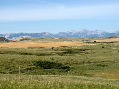Montana Drive-5
