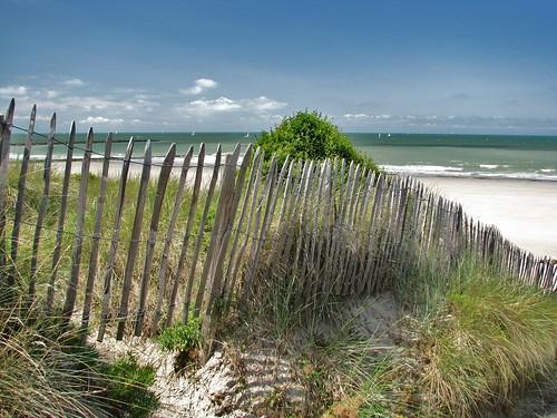 Strand vanaf site Halve Maan