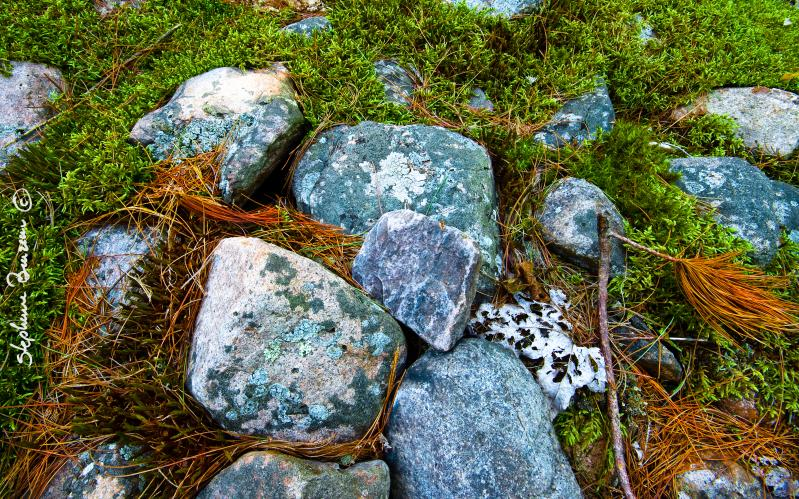 Through the rocks 5
