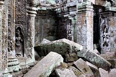 Ta Phrom, Angkor, Cambodia (dms_303) Tags: travel canon temple eos cambodia southeastasia angkor 2009 rebelxs 1000d touraroundtheworld