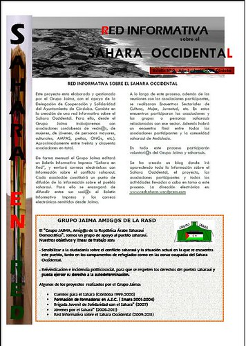 Boletin RISO Nº 0  01