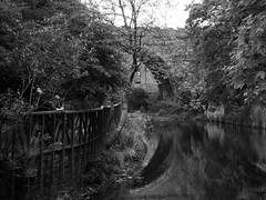 Water of Leith 3 (byronv2) Tags: bridge blackandwhite bw reflection monochrome river scotland blackwhite edinburgh waterofleith rnbwaterofleith