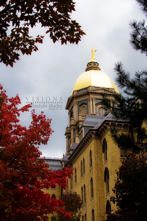 The golden dome wm