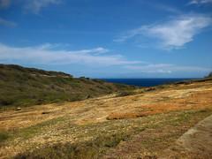 Picture 387 (Spectral Waves) Tags: hanaumabay oahuhawaiiislandenvironmentlandscape