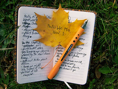 "an orange leaf reading ""NaNoWriMo Nov. 1"" and an orange pen lie on top of a notebook which contains a lot of cursive writing"