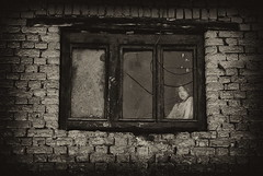 window (Aleksandar Ciric) Tags: window girl wall sadness break prozor zid cigla devojcica