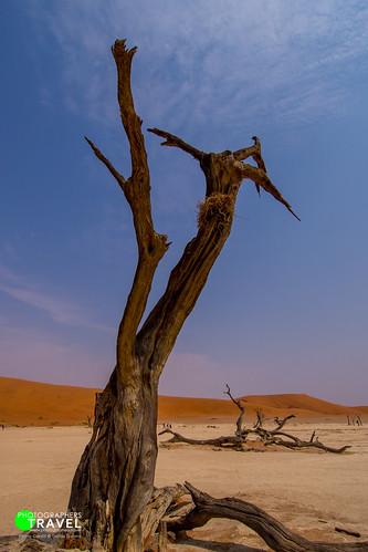 South Africa, Namibia & Botswana Roadtrip