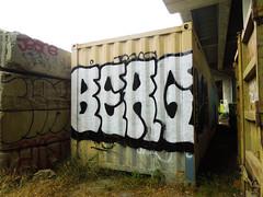 (gordon gekkoh) Tags: berg jeans close oakland graffiti