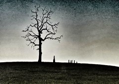 love...and loss(HSS) (BillsExplorations) Tags: slide sliderssunday silhouette figure graveyard cemetery lone loss remember grieving mourning tree field love brianruckley hss stagedscene
