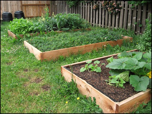 Raised beds out of control