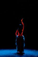 IMG_9311 (_Galle_) Tags: madrid danza arabe fusion galle baile flamenco compaia millunas monicatello