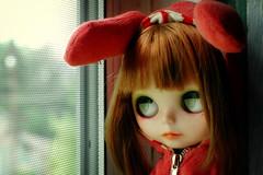 Introducing Tillie........... (1)