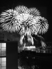 'splosions (striatic) Tags: seattle blackandwhite bw night photo washington fireworks outdoor unitedstatesofamerica lakeunion explosions gasworkspark eastlake splosions
