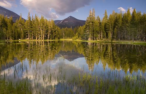 Pond in the Sierras