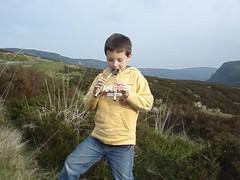 Tin Whistle, Sally Gap, Wicklow, Ireland
