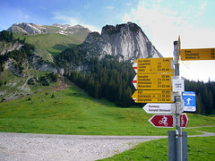 Gamplt oberhalb Wildhaus (Pelegon) Tags: street travel summer mountains alps green nature water trekking walking schweiz switzerland swiss natur ostschweiz berge mountaineering gras alpen stgallen wandern schafberg alpstein mountaining churfirsten toggenburg wildhaus swissness brisi gamplt wildhauserschafberg