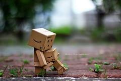 嗚...大家都欺負我!! (sⓘndy°) Tags: sanfrancisco toy toys figure figurine sindy kaiyodo yotsuba danbo revoltech danboard