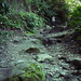 古道の岩肌