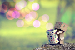 Bokeh Canister (Antty+) Tags: park cute stone wonderful circle is google singapore colorful power bokeh box awesome container seven round mysterious anton usm 711 fcuk eleven tang cardbox danbo  abigfave  danboard danboru  antty
