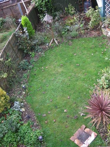 Lawn view 01/11/09