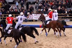 LCfoto_5093 (lcfoto) Tags: horse cheval elite passion luc avignon championnat horseball chevalpassion chamontin