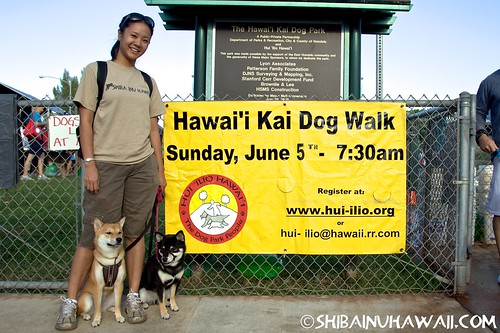 Photos from the 2011 Hawaii Kai Dog Walk!