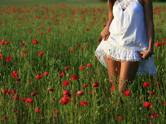 summer feeling (wunderskatz) Tags: woman white color colour green girl beauty field grass mujer hungary dof farm feminine no mulher country skirt babe sensual thighs poppy poppies menina depth fata nanni rapariga pannonhalma brassaï femeie wunderskatz outstandingromanianphotographers