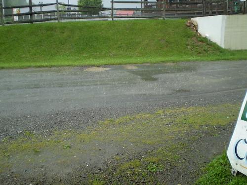 Yeah, that's rain