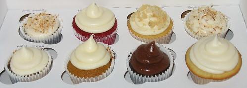 assorted cupcakes bridal sample