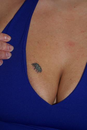 ladybug tattoo ladybug tattoo,