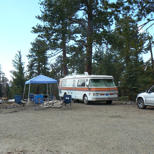 Our site at Sequoia National Forest