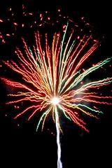 Fireworks Rays
