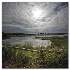 Landscape photography from Newtown, Isle of Wight. Tales from the riverbank. (s0ulsurfing) Tags: trees light wild summer sky cloud sunlight reflection nature water grass weather june clouds composition creek fence reflections river square relax landscape island coast lyrics interesting bravo skies quiet peace mud natural bright patterns wide reserve wideangle calm estuary explore coastal filter naturereserve vectis isleofwight vista coastline title riverbank grad newtown nationaltrust landschaft isle chill 2009 squared wight mellow newtowncreek altocumulus 10mm thejam sigma1020 ventnorblog picoftheweek nd4 s0ulsurfing aplusphoto vertorama