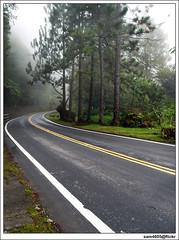 Gunung Emas - misty road (sam4605) Tags: road tree misty landscape ed scenery cloudy empty olympus pines malaysia jalan e1 sabah emptiness pemandangan tambunan zd lanskap penampang sabahborneo 1260mm gunungemas sam4605