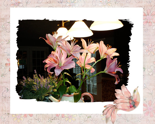 pink-saturday-pink-lilies