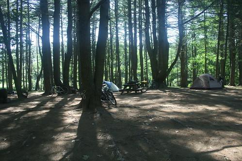 Campsite at Thomas Island