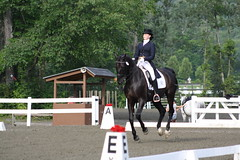 GMHA Dressage Days, Erin Shea & Marshal (TJ Kelly) Tags: horses horse vermont woodstock marshal vt horsebackriding equine horseriding equus dressage 05091 erinshea gmha greenmountainhorseassociation gmhadressagedays
