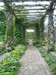 Pergola at West Dean (keepinsidethelines) Tags: westdean pergola