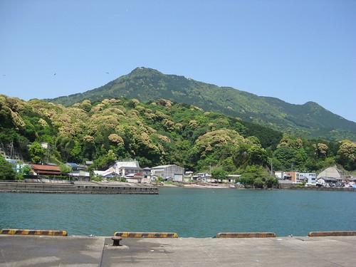 Mt. Tengura and Owase Bay viewing from Owase Fish Market