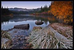 Moody Morning (Sandra OTR) Tags: california autumn trees light usa fall nature colors yellow forest landscape moody nevada sierra foliage aspen