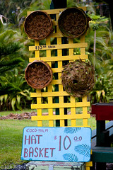 Hat Basket (JunBelen) Tags: flowers fruits island hawaii pacific maui hawaiian tropical fruitstand roadtohana flowerstand pacficocean junbelen junbelencom