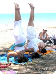 Yoga Ayurveda Puerto Rico, Agosto