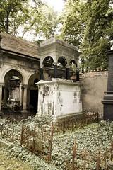 Prague_20090823_237 (negotiable_me) Tags: plants cemetery prague places czechrepublic melancholy jewishcemetery 2009 funereal pragueikov