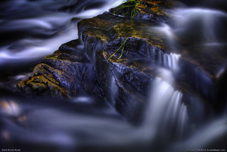Acadia National Park - Duck Brook